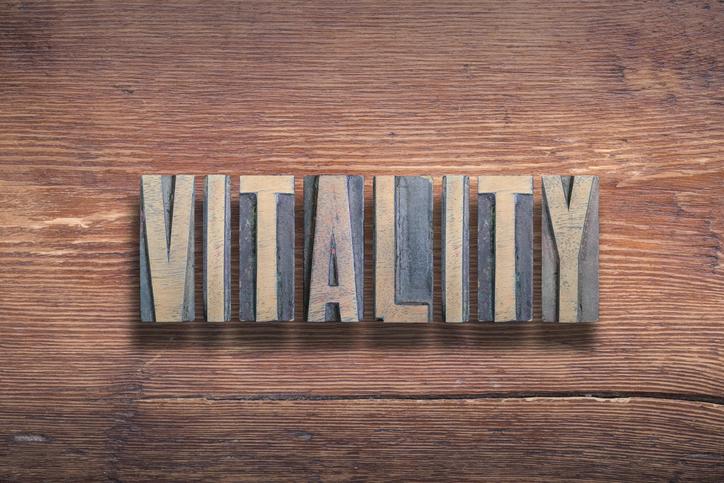 vitality letterpress letters on wood